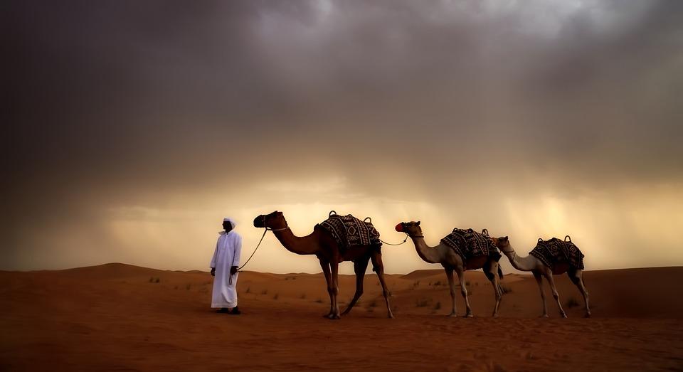 desert-2650556_960_720