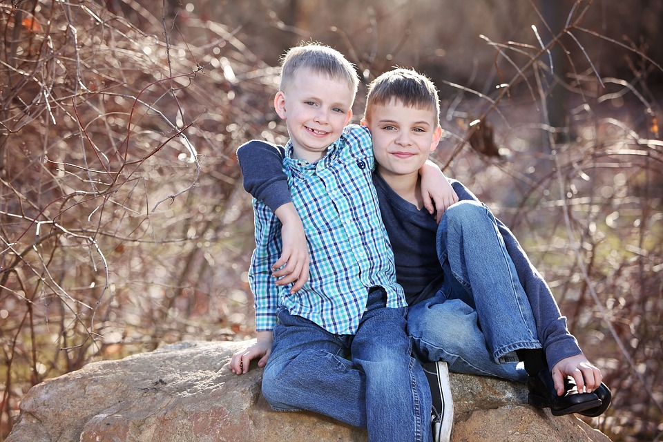 brothers-2098860_960_720