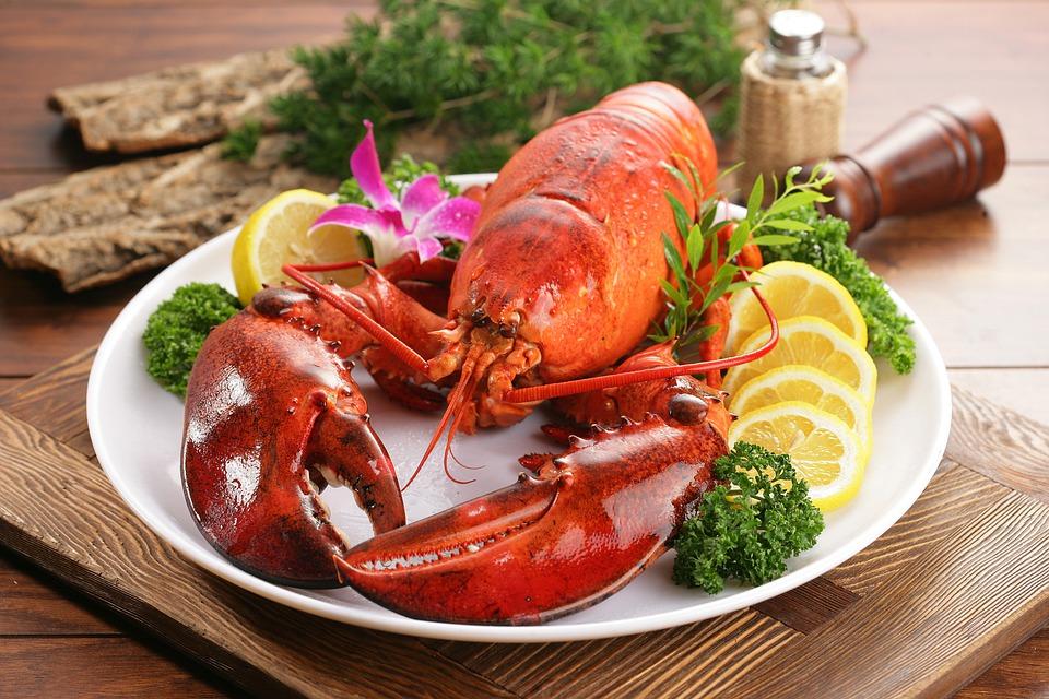 lobster-4952603_960_720